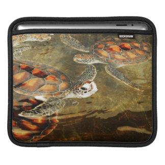 Tanzania, Zanzibar, Nungwi, Mnarani Aquarium 2 Sleeve For iPads