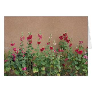 Taos Flowers Greeting Card