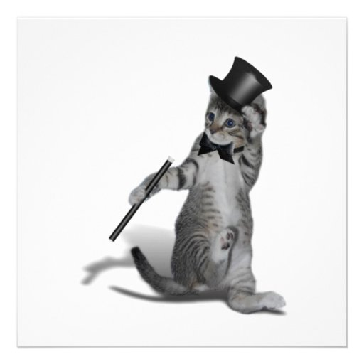 Tap Dancing Kitten Personalized Invite