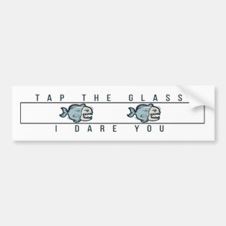 Tap the glass I dare you Bumper Sticker