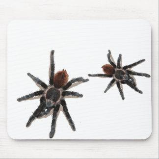 Taranchula spider live pet mouse mat