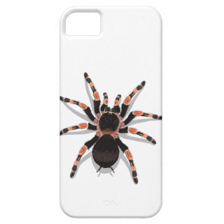 tarantula barely there iPhone 5 case