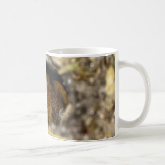 Tarantula Hide-Away Coffee Mug