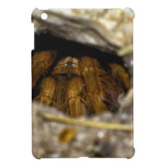 Tarantula Hide-Away iPad Mini Cover