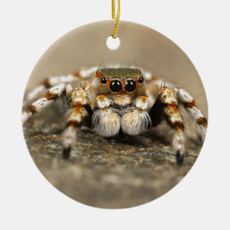 Tarantula Jumping Bird Spider awesome accessories Christmas Ornament