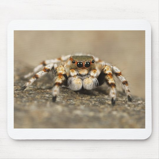 Tarantula Jumping Bird Spider awesome accessories Mouse Mat
