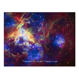 Tarantula Nebula Star Forming Gas Cloud Sculpture Postcard