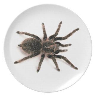 Tarantula Spider Dinner Plate. Dinner Plates