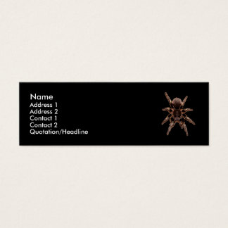 Tarantula Spider Mini Business Card
