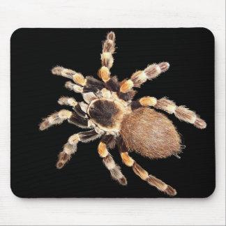 Tarantula Spider Mouse Mat