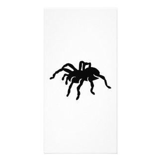 Tarantula spider personalised photo card