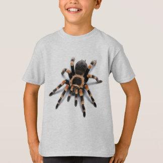 TARANTULA SPIDER T SHIRTS