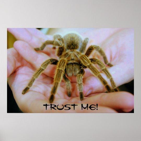 Tarantula, Trust Me! Poster