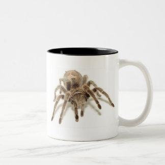 Tarantula Two-Tone Coffee Mug