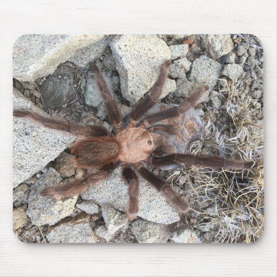 Tarantulas are scary mouse mat