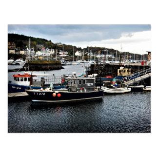 Tarbert Harbour Postcard
