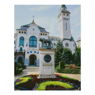 "Targu Mures county prefecture 8.5"" X 11"" Flyer"
