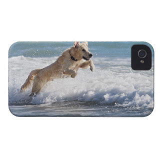 tarifa, cadiz, andalusia, spain 2 Case-Mate iPhone 4 case