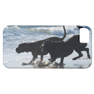tarifa cadiz andalusia spain barely there iPhone 5 case