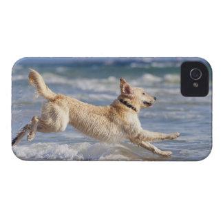 tarifa, cadiz, andalusia, spain Case-Mate iPhone 4 case