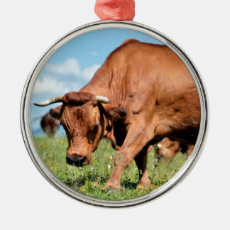 Tarine cow in the French Alps Ornaments