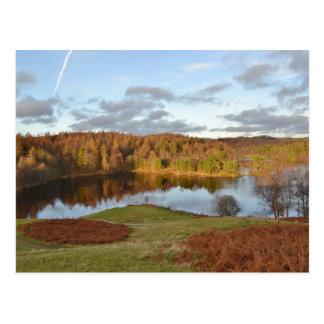 Tarn Hows - English Lake District Postcard