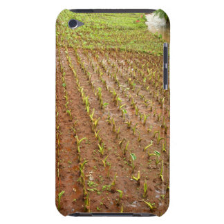 Taro field iPod touch Case-Mate case