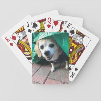 Tarpe Diem! Playing Cards