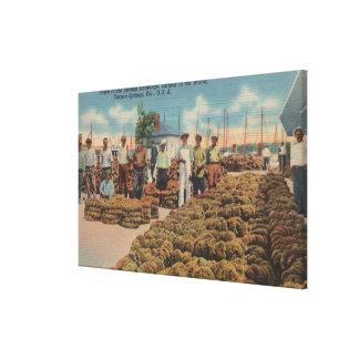 Tarpon Springs FL - Scene of Sponge Exchange Canvas Print