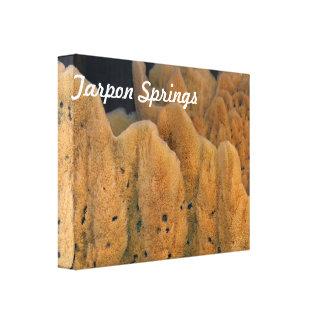 Tarpon Springs Sponge Gallery Wrap Canvas