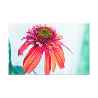 Tart Flower Canvas Canvas Print