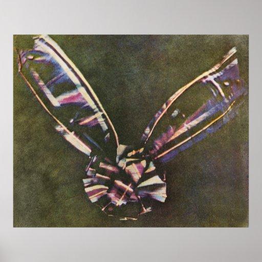 Tartan Ribbon First Known Colour Photograph Poster