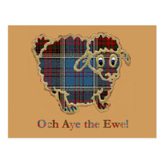 "tartan sheep ""Och Aye the Ewe"" Postcard"