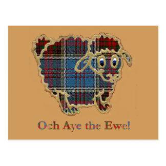 """tartan sheep """"Och Aye the Ewe"""" Postcard"""