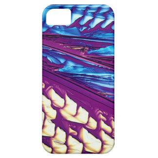 Tartaric Acid Crystals iPhone 5 Cover