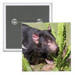 Tasmanian Devil, Australia 15 Cm Square Badge