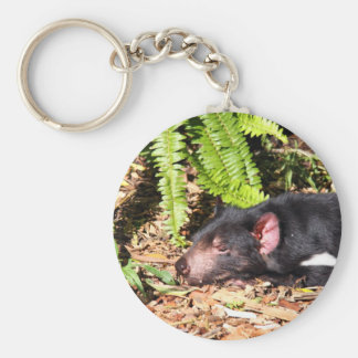 Tasmanian Devil Basking in the Sunlight Key Ring