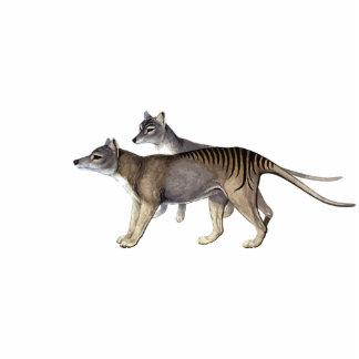 Tasmanian Tiger Cutout Magnet/Sculpture Standing Photo Sculpture