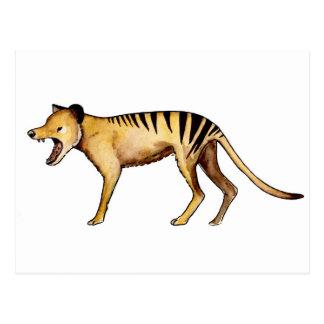 Tasmanian tiger, Thylacine Postcard