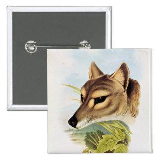 Tasmanian Wolf or Tiger 15 Cm Square Badge