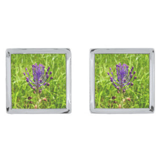 Tassel-Hyacinth Cufflinks Silver Finish Cuff Links