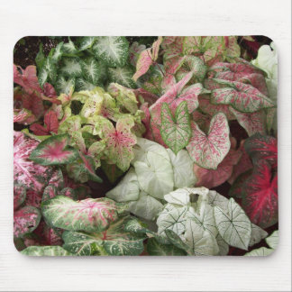 Taste of the Tropics Mouse Mat