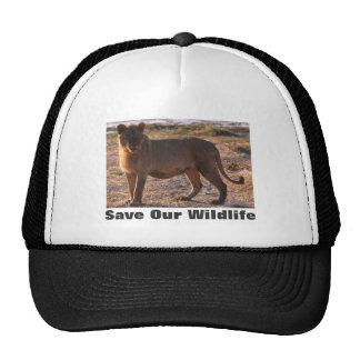 Tau Save Our Wildlife Hat