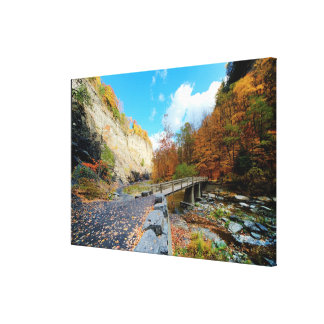 Taughannock Falls State Park Canvas Print