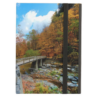 Taughannock Falls State Park Case For iPad Air