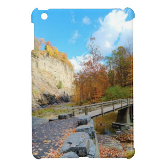 Taughannock Falls State Park Cover For The iPad Mini