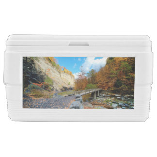 Taughannock Falls State Park Ice Chest
