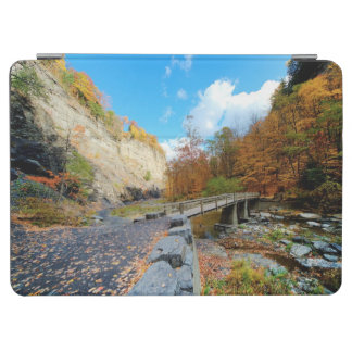 Taughannock Falls State Park iPad Air Cover