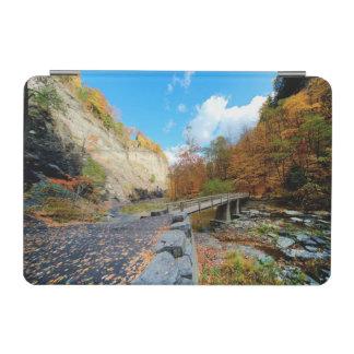 Taughannock Falls State Park iPad Mini Cover