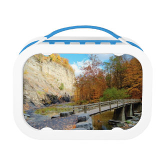 Taughannock Falls State Park Lunch Box